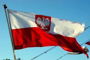 polnisches Bier - polnische Flagge