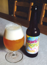 Tropical Mouth Explosion IPA
